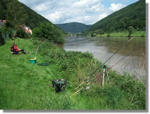 Neckar Rockenau